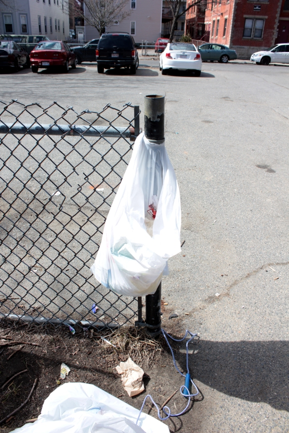 Without trash receptacles, the Friends of Mary Jane Lee Park provided trash bags for the event