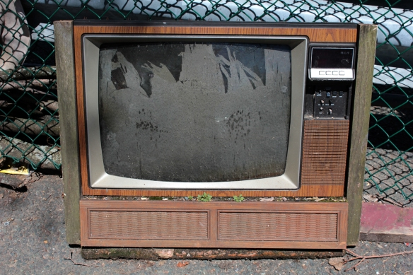 old television set face with new plant growth