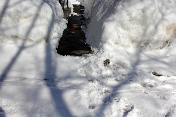 Snow Ways